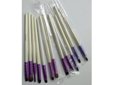 Set de cepillos profesionales x 12
